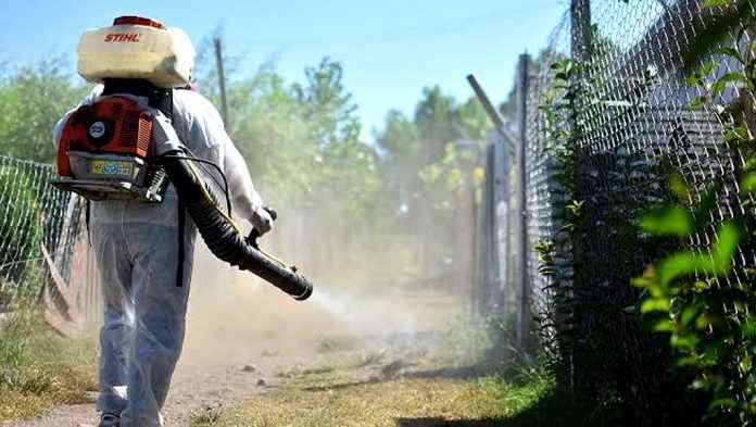 Aseguran que la epidemia de dengue es la más grande de los últimos 30 años